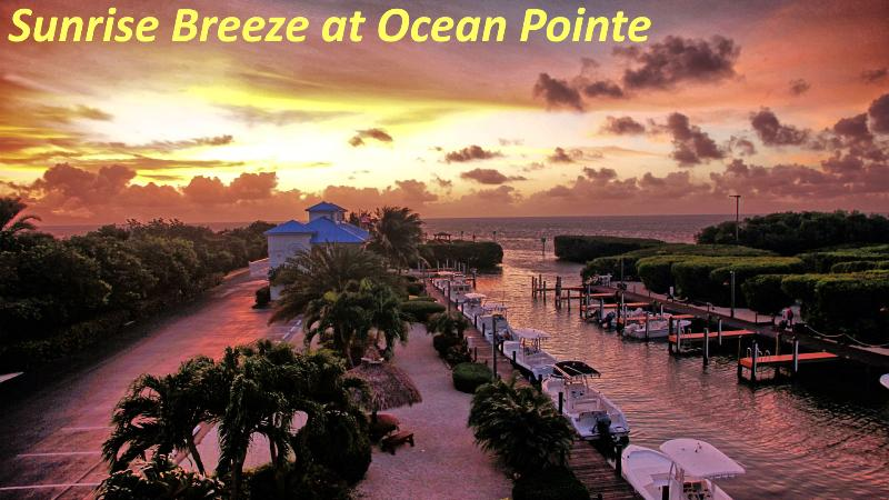 View from balcony at Sunrise Breeze - Sunrise Breeze-Ocean Pointe-Awesome Ocean View too - Tavernier - rentals
