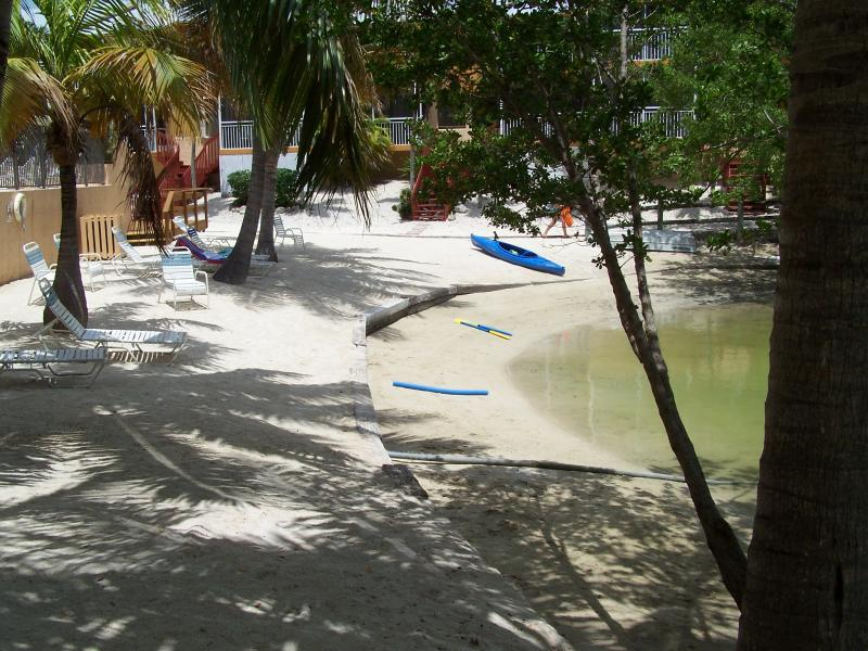 Lagoon Beach & Pool next to the Townhouse - Diving, Fishing, Snorkeling, Kayaking Paradise - Key Largo - rentals