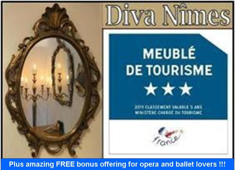 Affordable opulence, a prime location & a truly UNIQUE option. - Diva-Nîmes - unique ambiance in a prime location - Nîmes - rentals