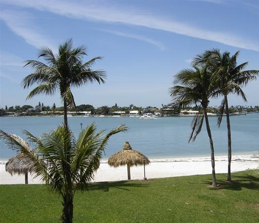 Bahia Vista Private Beach - Have Nothing To Do & All Day To Do It on Isla! - Saint Petersburg - rentals