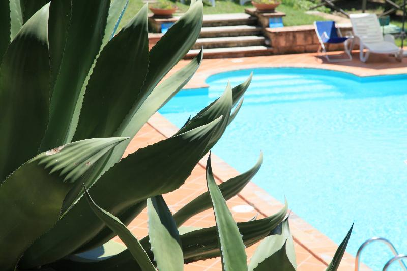 Agriturismo with swimming pool - Image 1 - Amelia - rentals
