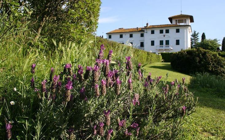 Villa Sottopoggio 6 - Image 1 - Canneto - rentals