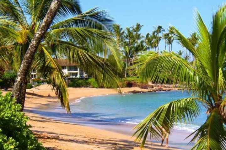 Napili Bay - Napili Shores Resort - Napili Shores Resort C-120 - Napili-Honokowai - rentals