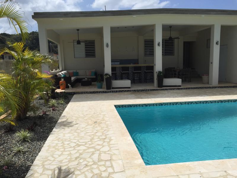 New addition to home, covered 32x17 patio, 24x14 salt pool and huge pool deck with tropical plants - NEW POOL & PATIO, 3 YEAR OLD PRIVATE HOME 5 MILES FROM THE BEACH - Isabela - rentals