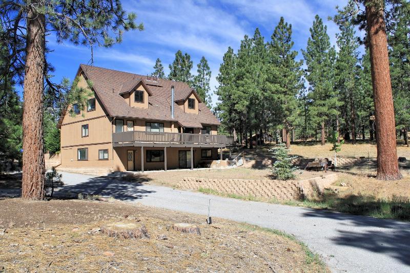 Kammrad Lodge - Image 1 - Big Bear Lake - rentals