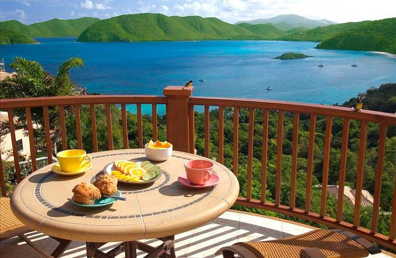 Peter Bay Gatehouse Penthouse Suite - Image 1 - Virgin Islands National Park - rentals