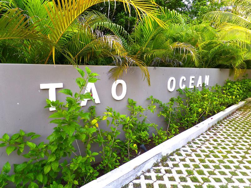 Tao A3 - Villa Tao A3 - Playa del Carmen - rentals