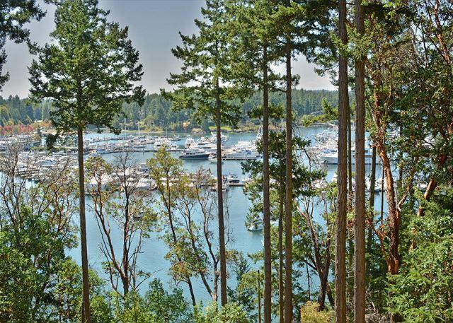 San Juan Island, Roche Harbor Overlook #196 - Image 1 - Roche Harbor - rentals