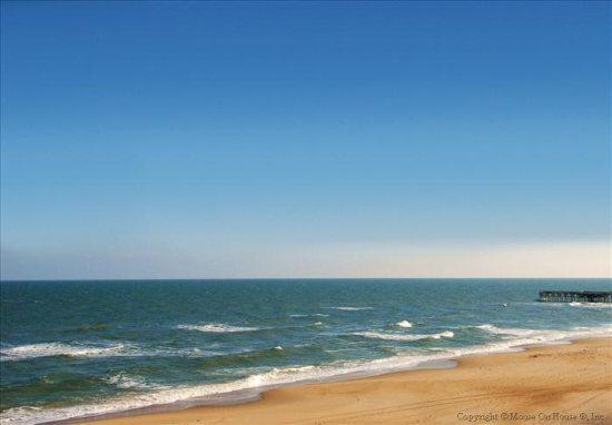 Penthouse Paradise 408 B *Direct Oceanfront!* - Image 1 - Virginia Beach - rentals