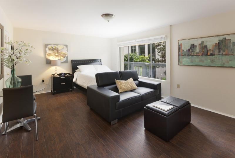 Furnished Studio Apartment at S Van Ness Ave & Lombard St San Francisco - Image 1 - San Francisco - rentals