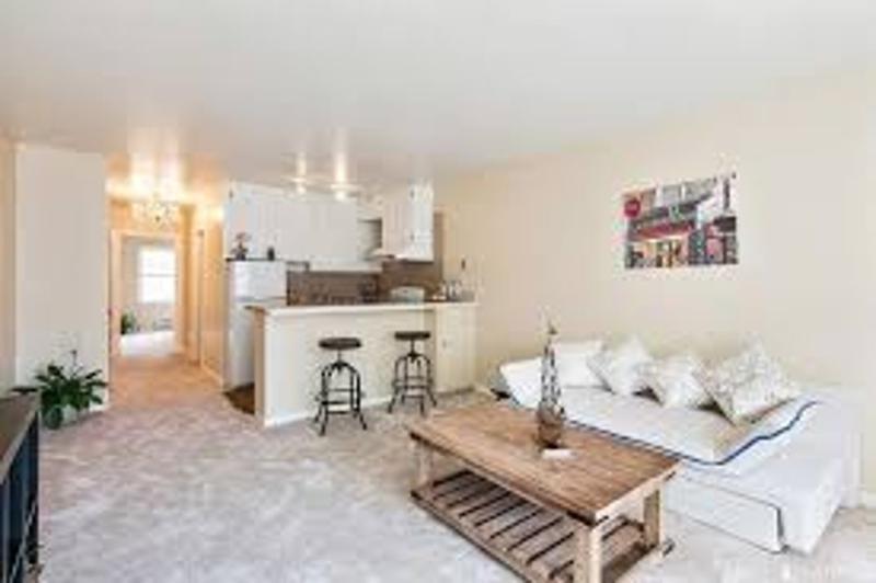 Furnished 1-Bedroom Condo at Clay St & Jones St San Francisco - Image 1 - San Francisco Bay Area - rentals