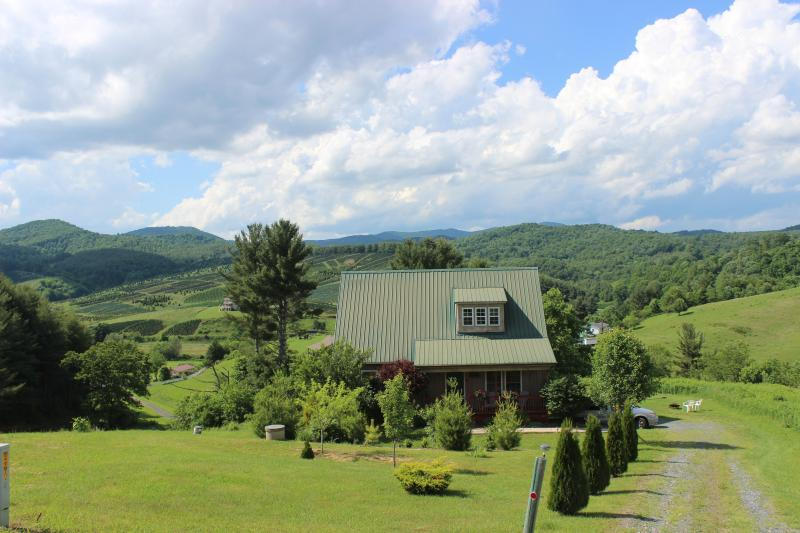 "Lots of privacy with lots of room to roam - ""A LITTLE TLC""-SPA*MTN VIEWS*NEW RIVER*FP*PRIVACY! - Boone - rentals"