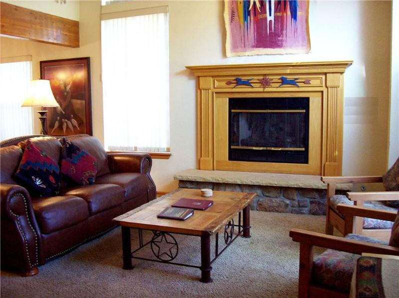 Lovely Private Homes 3 Bedroom Luxury Homes - BV132 - Image 1 - Breckenridge - rentals