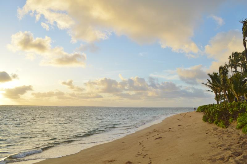 Sunrises and sunsets can both be seen from this stunning north shore location. - Resort Living on Oahu's Famous North Shore - Kahuku - rentals