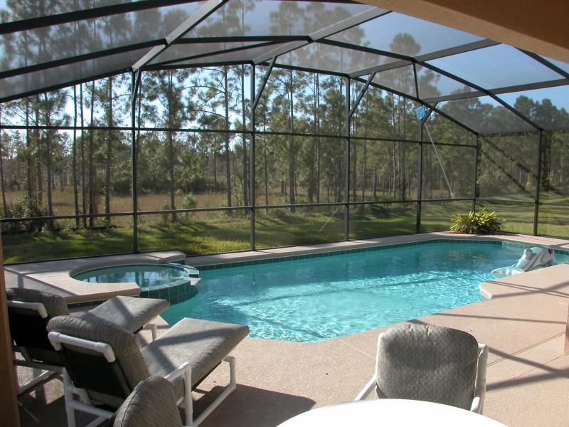 South-facing 30'x15' pool, overlooking conservation area - Watersong - Luxury 4 Bedroom 3 Bath Florida Villa! - Davenport - rentals