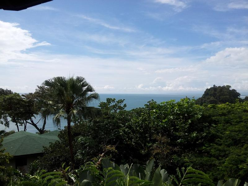 Between the ocean and the rain forest.  Welcome to the jungle! - Tropical Bungalow 122, Ocean View, Private Beach - Manuel Antonio - rentals