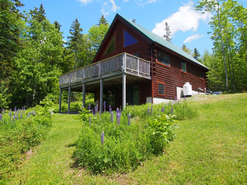 Flowers in the summer - Waterview Log Home-Acadia - Some Great Openings Left - Bar Harbor - rentals