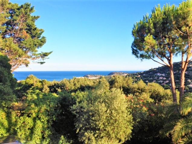 Air-conditioned villa with pool for 12 persons - Image 1 - Cavalaire-Sur-Mer - rentals