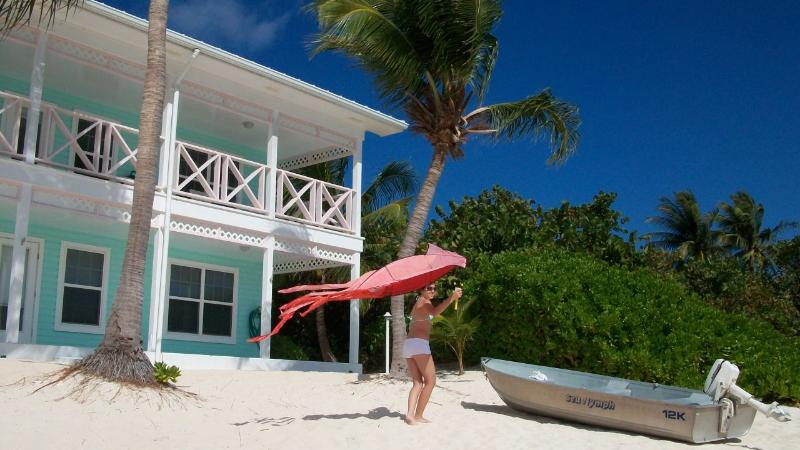 Neptune's Berth - A Little Cayman Escape - Image 1 - Little Cayman - rentals