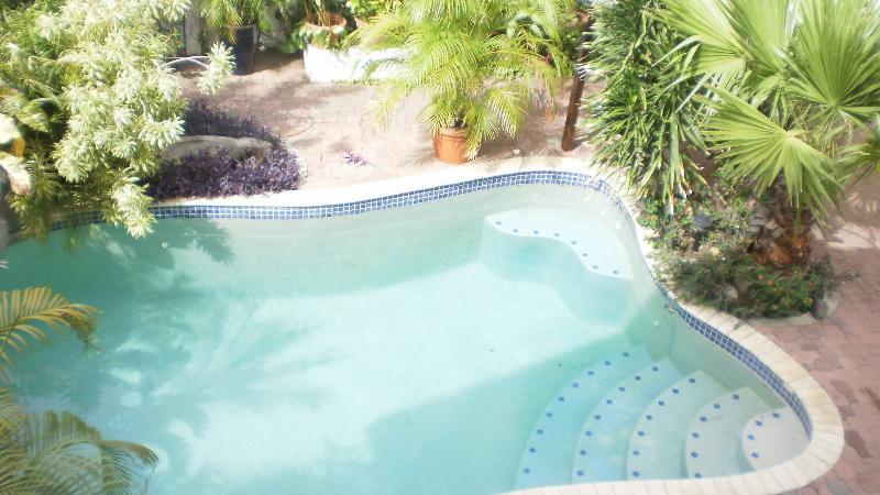 Tropical Garden Pool View Apartment - ID:60 - Image 1 - Aruba - rentals