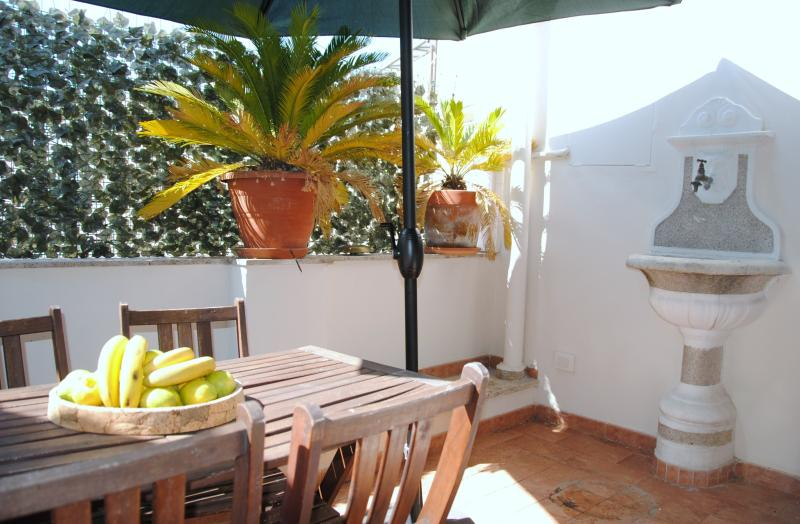 Sunny 2bdr apt w/terrace - Image 1 - Rome - rentals