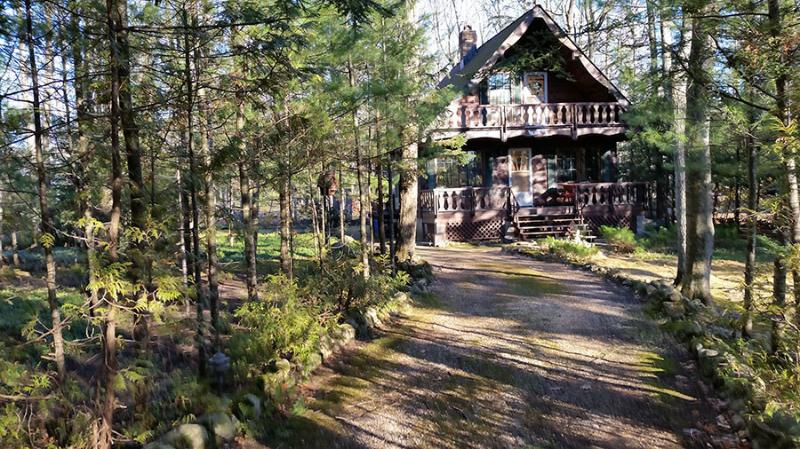 Whispering Pines cottage (#1014) - Image 1 - Tiny - rentals