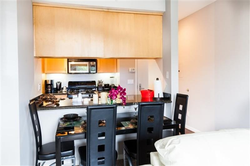 BEAUTIFUL, SPACIOUS AND LUXUROUS 1 BEDROOM APARTMENT - Image 1 - Chicago - rentals