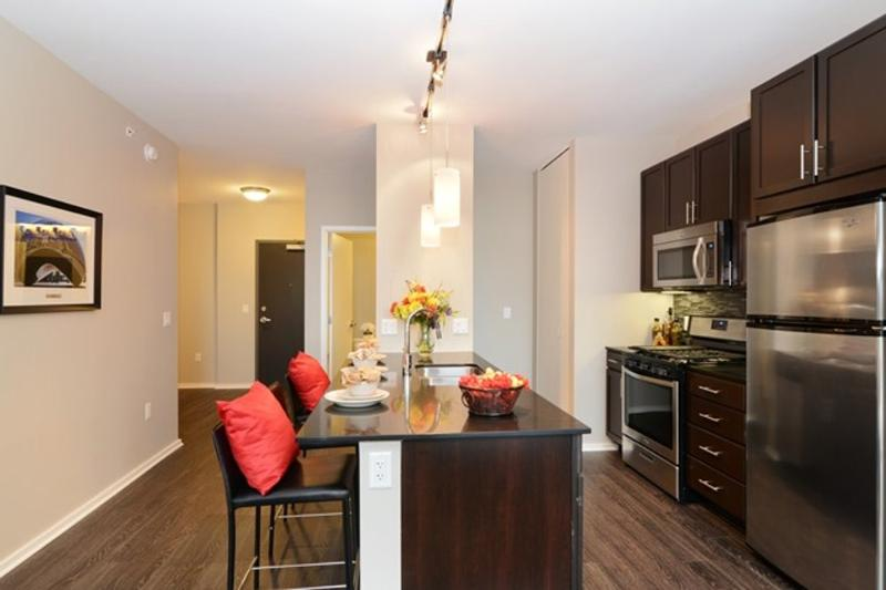 REMARKABLY FURNISHED 2 BEDROOM APARTMENT IN CHICAGO - Image 1 - Chicago - rentals