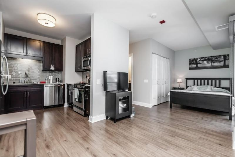 ELEGAN, LUXURIOUS AND BEAUTIFULLY FURNISHED CONVERTIBLE 1 BEDROOM UNIT - Image 1 - Chicago - rentals