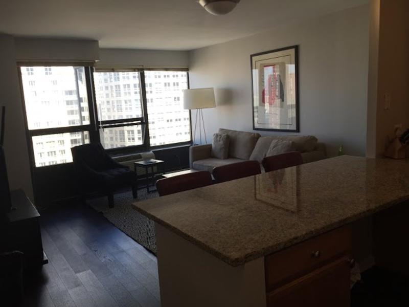 CLEAN, COZY AND SPACIOUS 1 BEDROOM, 1 BATHROOM CONDO - Image 1 - Chicago - rentals