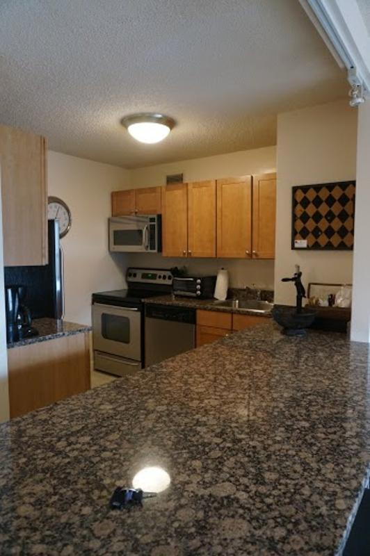 BEAUTIFULLY FURNISHED, COZY AND CLEAN 1 BEDROOM, 1 BATHROOM APARTMENT - Image 1 - Chicago - rentals