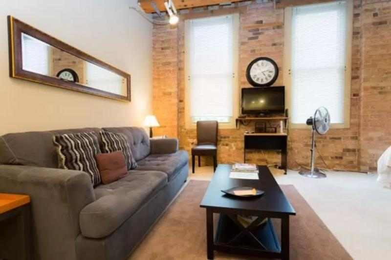 BEAUTIFULLY FURNISHED AND COMFORTABLE STUDIO LOFT - Image 1 - Chicago - rentals