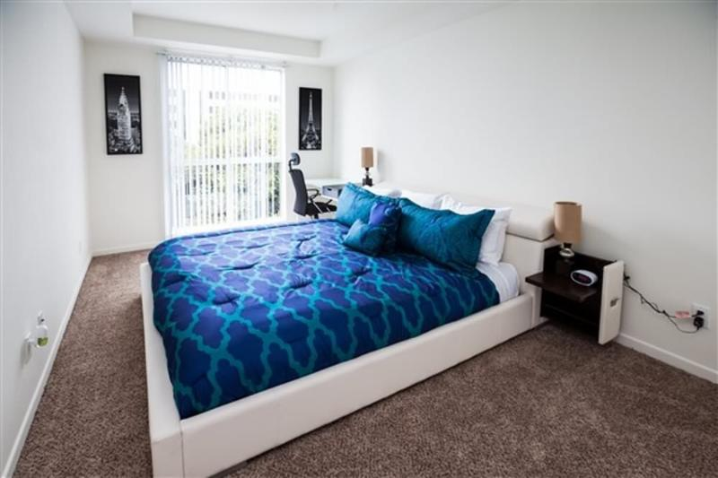 BEAUTIFUL AND LUXURIOUS 2 BEDROOM, 2 BATHROOM APARTMENT - Image 1 - Chicago - rentals