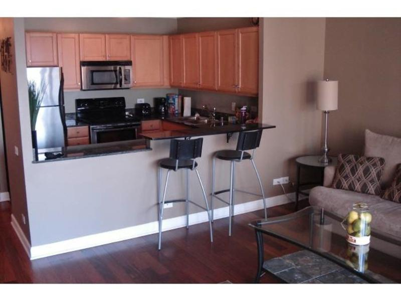MODERN AND CLEAN FURNISHED 1 BEDROOM 1 BATHROOM CONDOMINIUM - Image 1 - Chicago - rentals