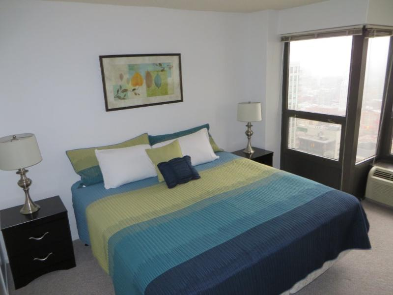 ELEGANT AND CLEAN FURNISHED 1 BEDROOM 1 BATHROOM CONDOMINIUM - Image 1 - Chicago - rentals