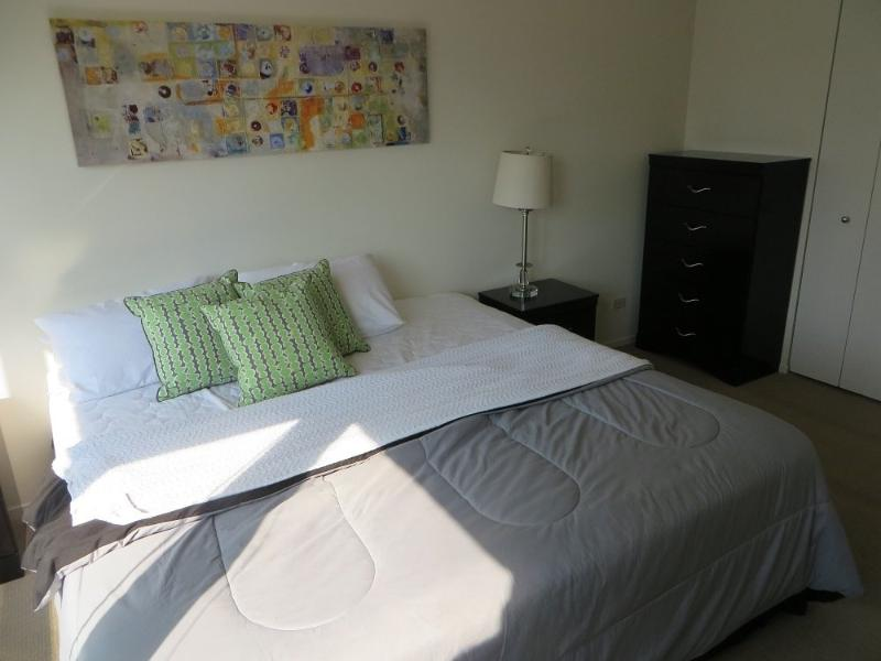 BEAUTIFUL AND SPOTLESS FURNISHED 1 BEDROOM 1 BATHROOM CONDOMINIUM - Image 1 - Chicago - rentals