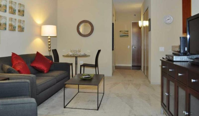Clean and Lovely Studio Chicago Apartment With 24 Hour Doorman? - Image 1 - Chicago - rentals