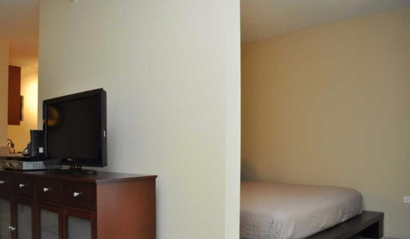 Gorgeous and Splendid 1 Bedroom Apartment in Chicago ? - Image 1 - Chicago - rentals