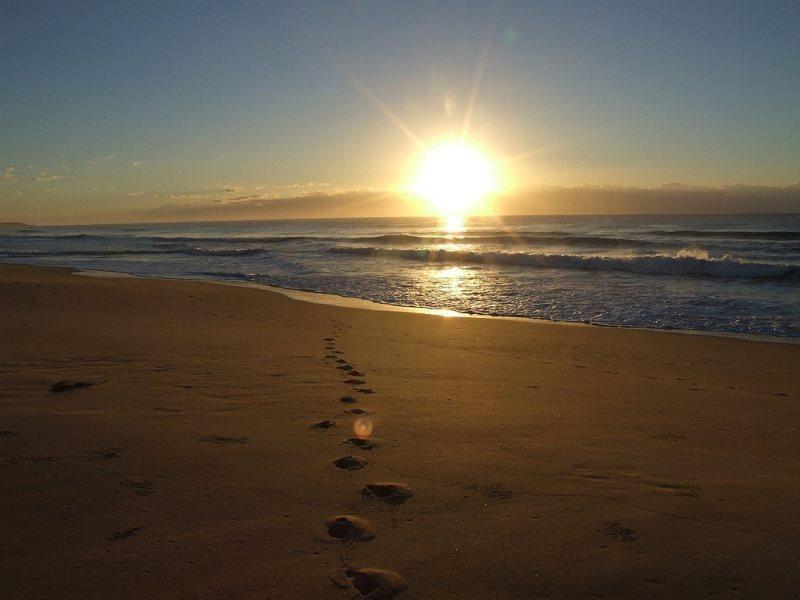 Sunrise Sanctuary - A stunning OCEANFRONT retreat! - Image 1 - Virginia Beach - rentals