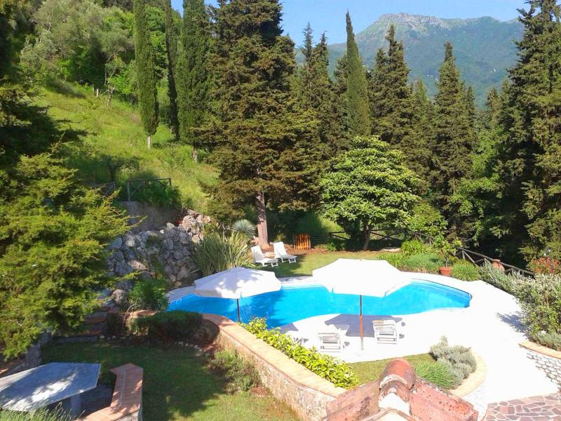 Villa Versiliana with large pool and Park - Villa Versiliana with large pool near to Beaches - Lido Di Camaiore - rentals