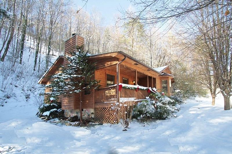 'Bear Ridge Cabin' Secluded setting on 5 Acres!!  Central to All Attractions!! - Image 1 - Townsend - rentals