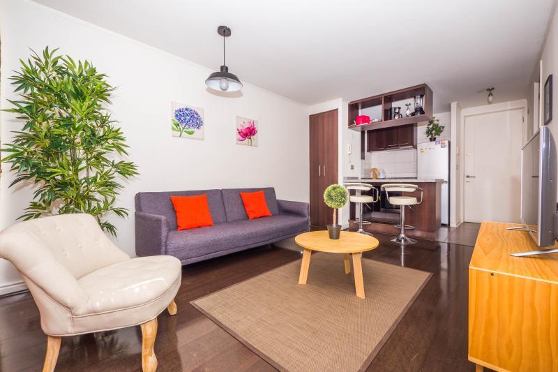 Nice & Cozy 2 Bedroom Apartment in Providencia - Image 1 - Santiago - rentals