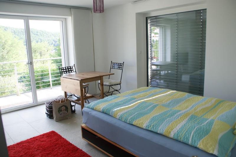 Vacation Apartment in Baden (Switzerland) - modern, central, comfortable (# 9478) #9478 - Vacation Apartment in Baden (Switzerland) - modern, central, comfortable (# 9478) - Baden - rentals