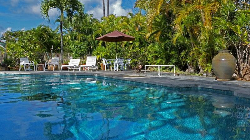 Swimming pool - Kailua one bedroom with full kitchen and pool - Kailua - rentals