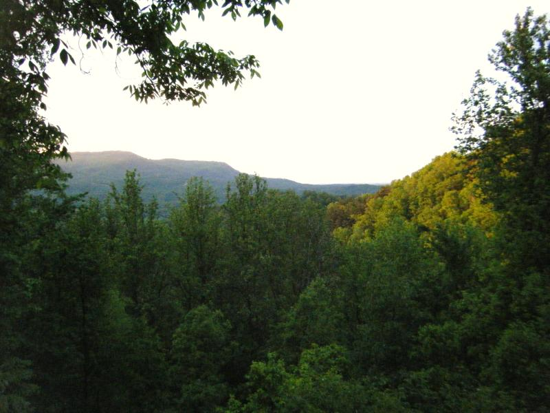 The view from Mary's Cottage deck and great room across the Smoky MT foothills. - Hideaway condo a Treehouse Experience! Wi-Fi available Handicap Accessible - Pigeon Forge - rentals