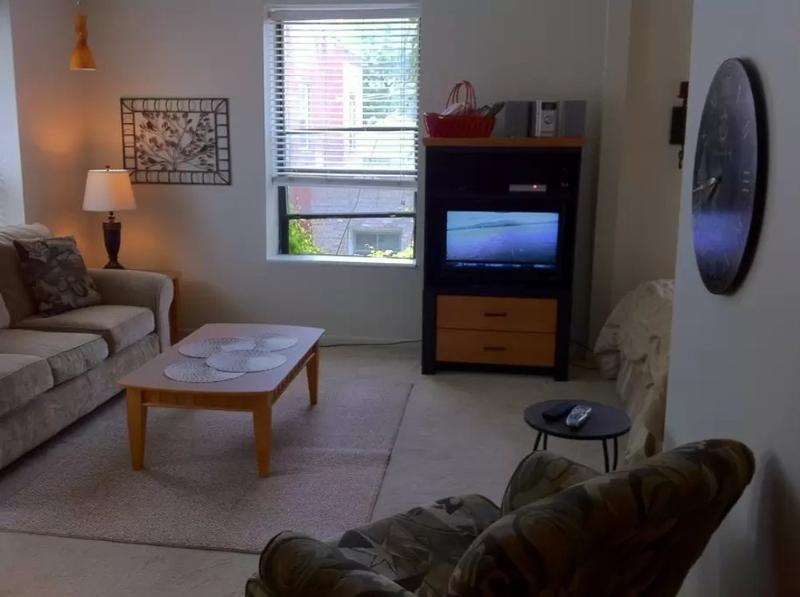 FULLY FURNISHED, CLEAN AND ADORABLE STUDIO APARTMENT - Image 1 - Chicago - rentals