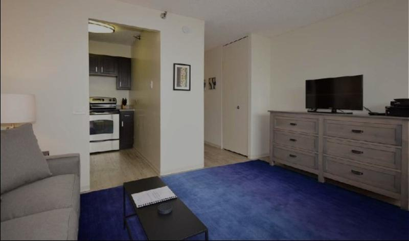 Gorgeous Studio Apartment in Chicago With Elevator and Nice Amenities - Image 1 - Chicago - rentals
