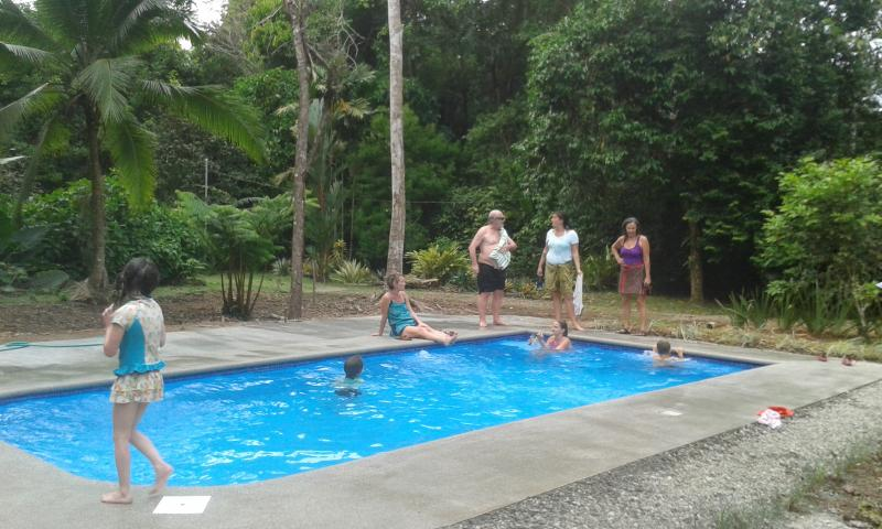 Our new salt water swimming pool.  A wonderful way to cool down and relax! - 3BR Jungle House w/pool on 8 acres near Beach,Town - Puerto Viejo de Talamanca - rentals