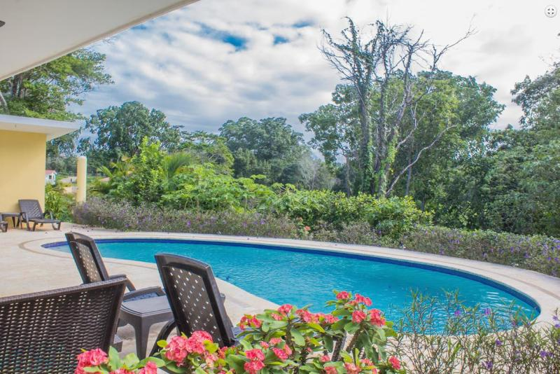 Great villa private pool, Sosua - Image 1 - Sosua - rentals