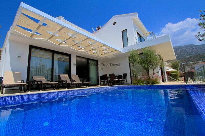Royale Villa - Image 1 - Kalkan - rentals